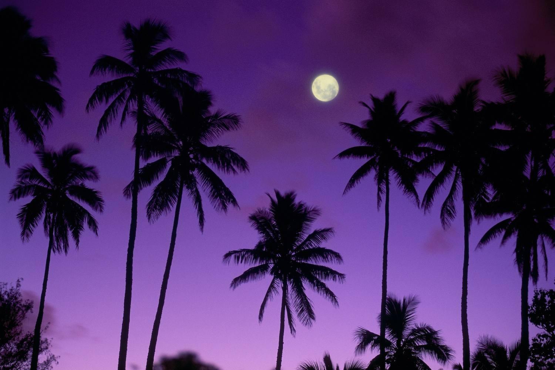Full Moon in Polynesia
