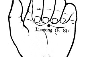 Loa Gong Pericardium 8