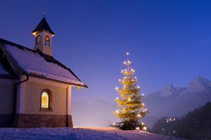 A lit christmas tree at night