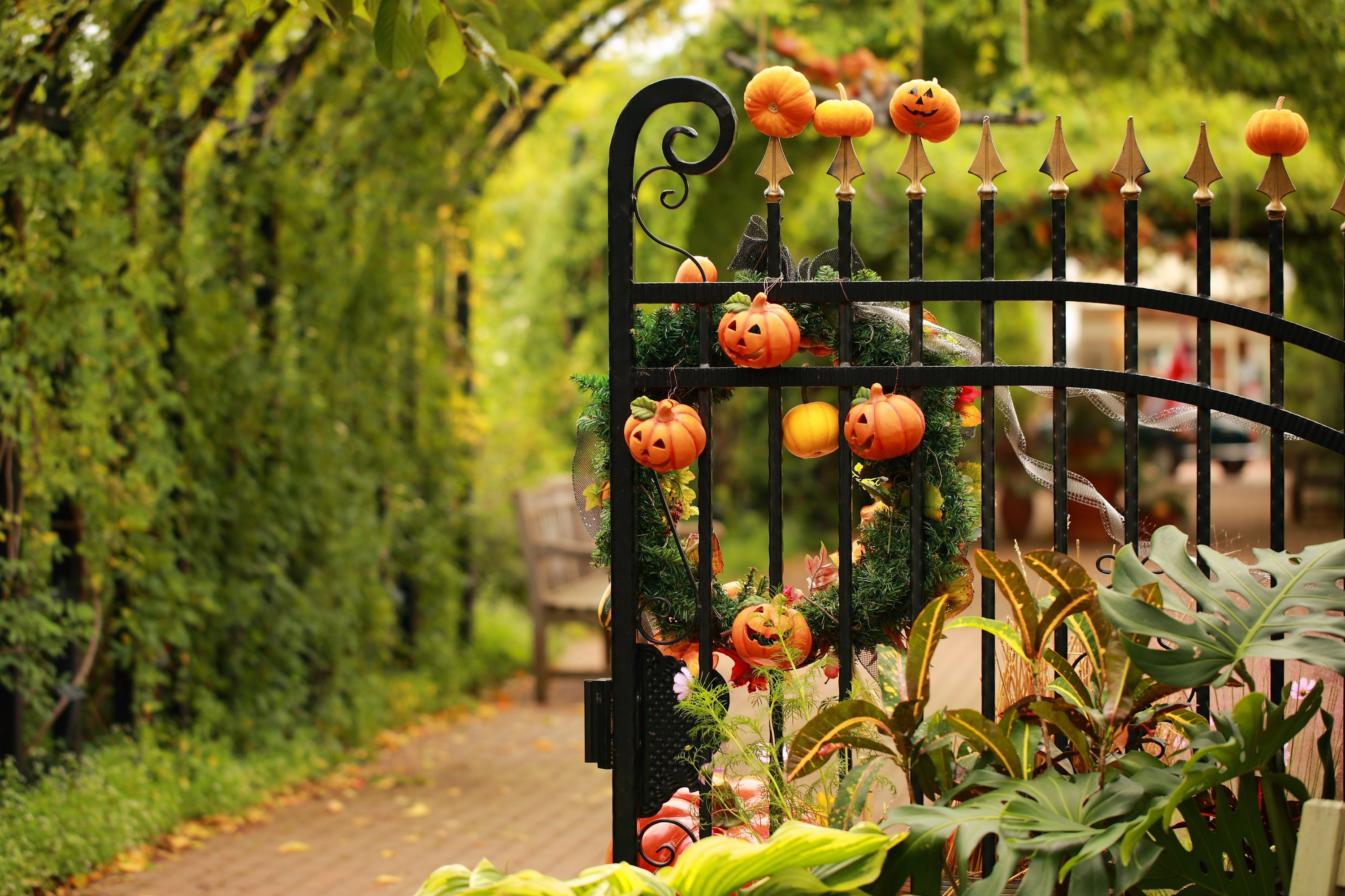 gate decorated for halloween