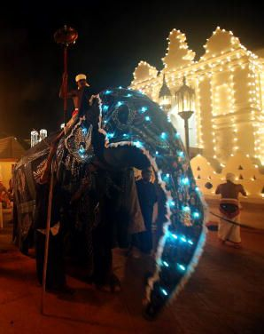 An illuminated elephant at the Kandy Esala Perahera festival