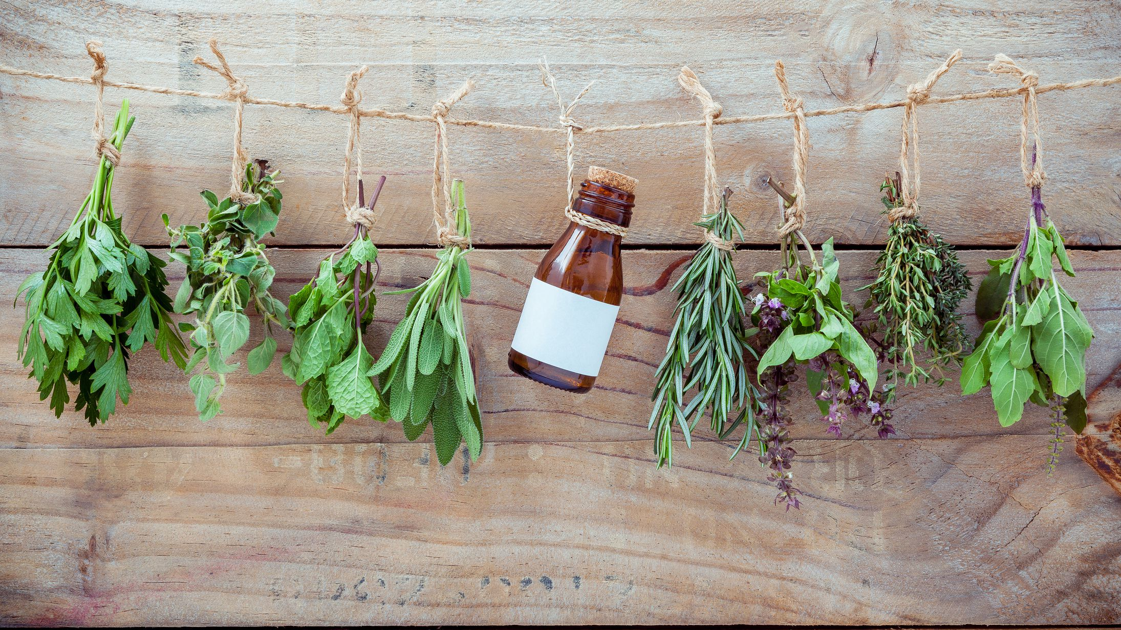 10 Magical Herbs to Use in Pagan Practice
