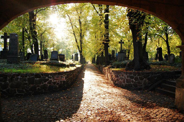 Cemetery path