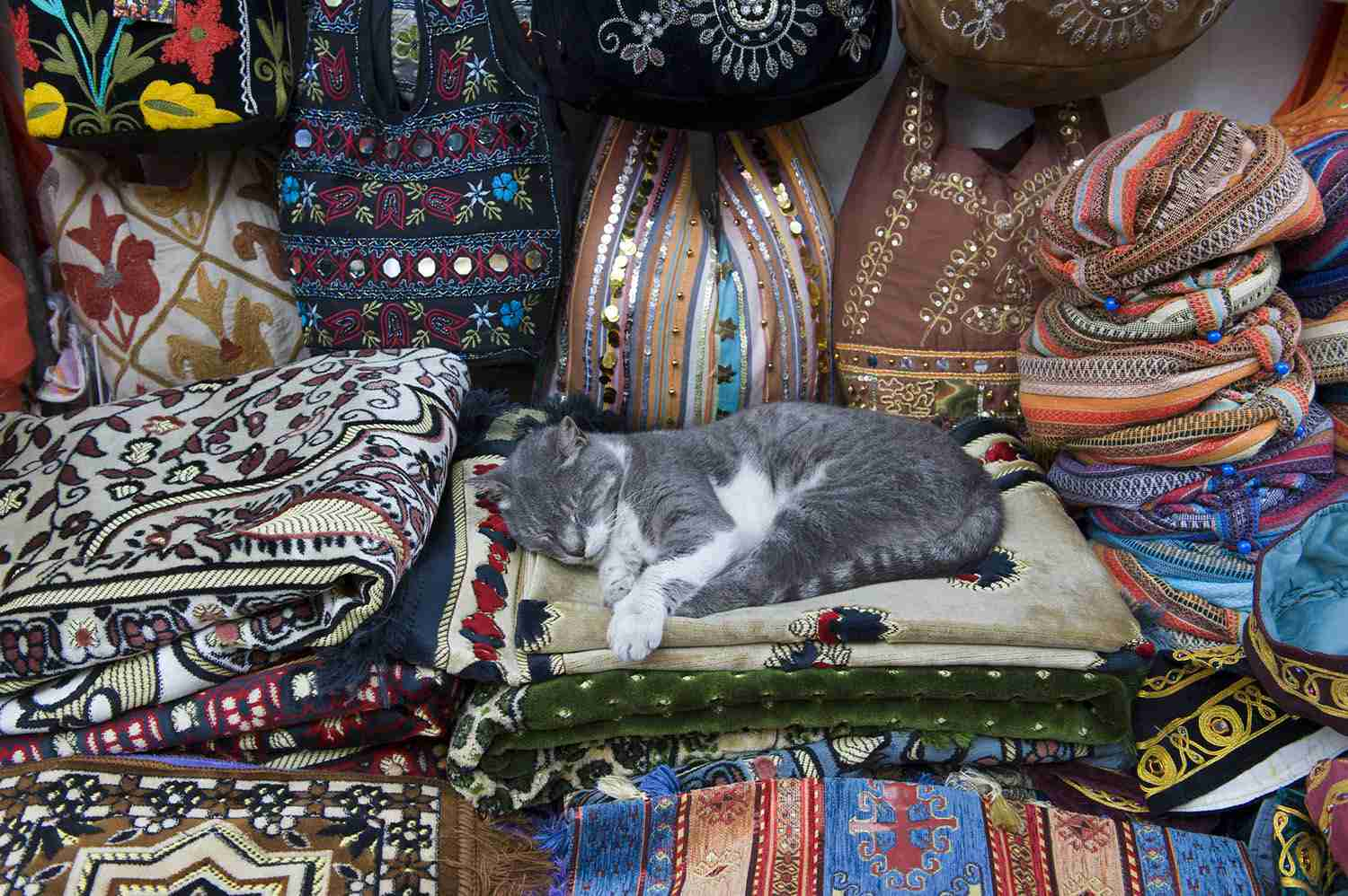 A Cat Sleeps Surrounded by Fabrics in the Grand Bazar, Istanbul,Turkey