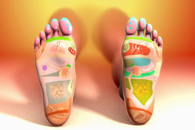 Reflexology Foot Map
