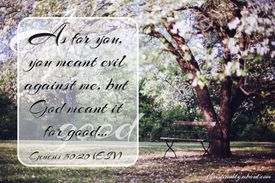 Quote from genesis 50:20 on background of cherry tree