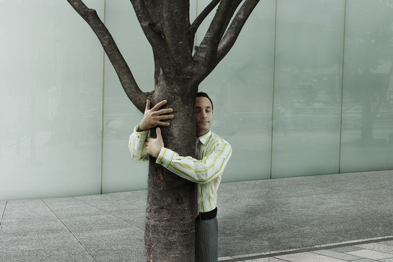 I got Tree Hugging Novice. Quiz: Are You a Tree Hugger?