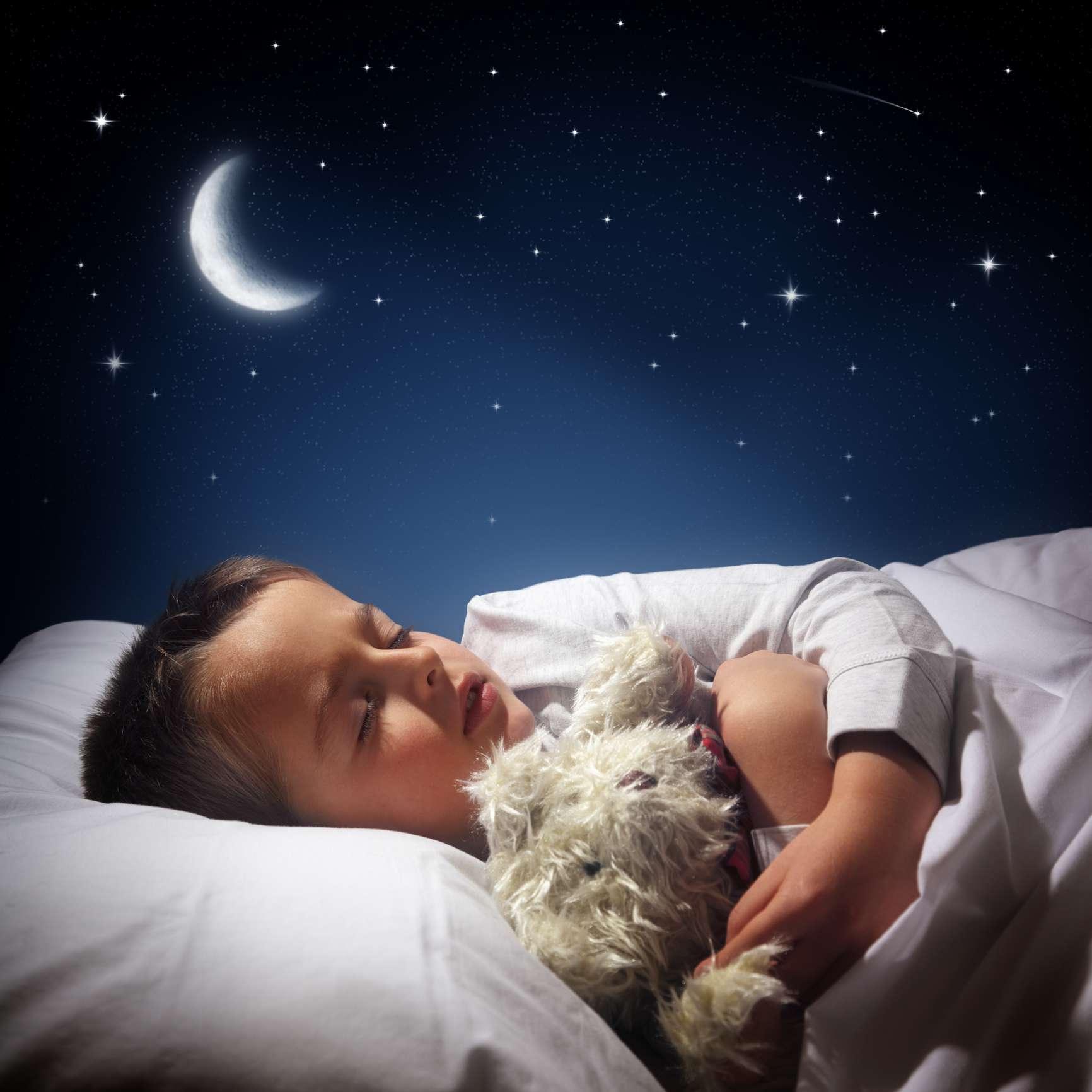 Boy sleeping with stuffed animal
