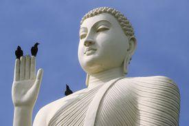 Birds perch on a Buddha in Trincomalee, Sri Lanka.
